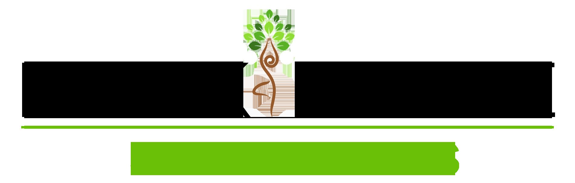 mn-skincare-logo-website-designer-blueprint-marketing-bakersfield-ca
